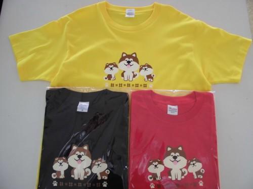 秋田犬 大人Tシャツ